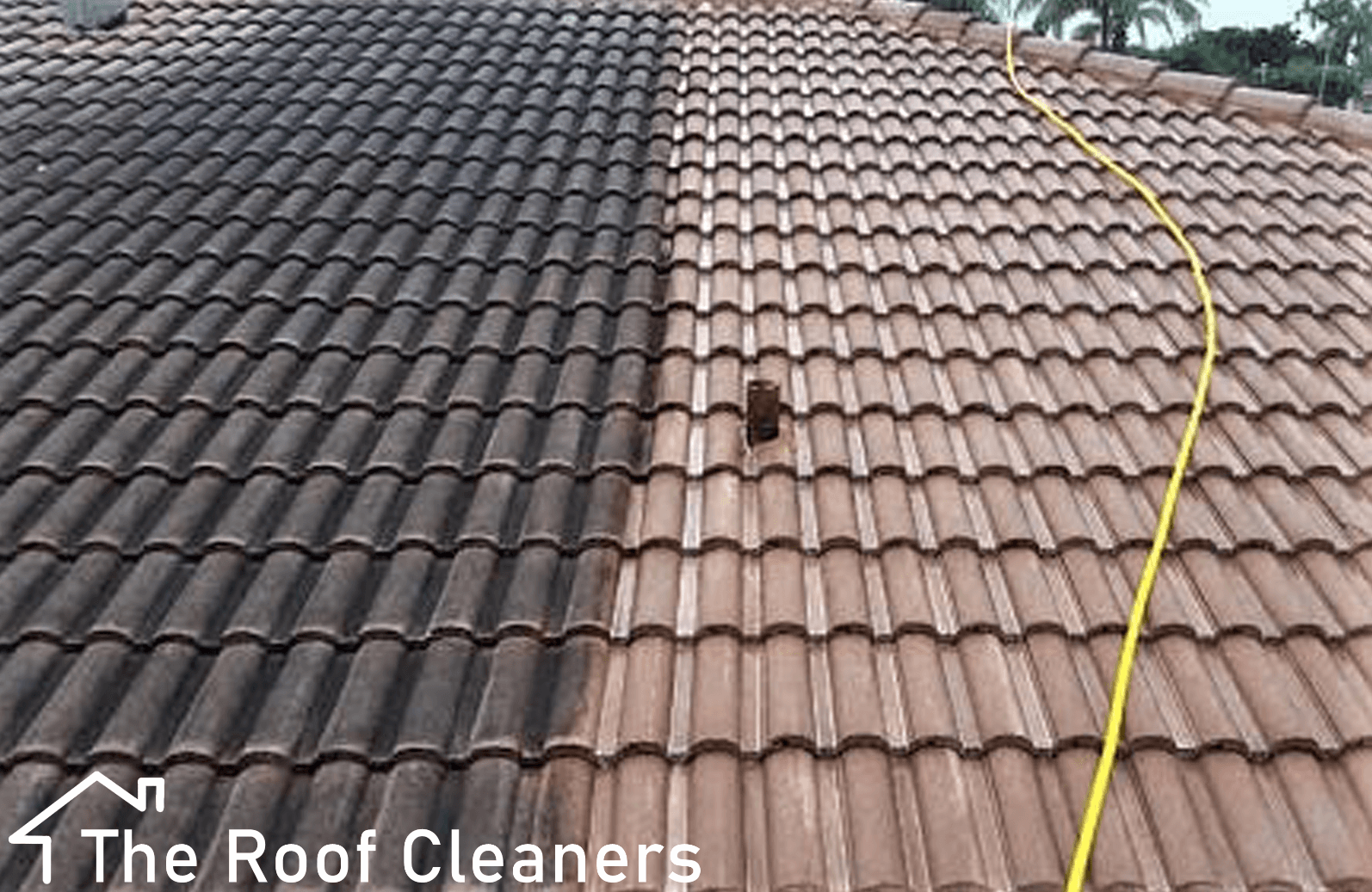 Roof Soft washing London